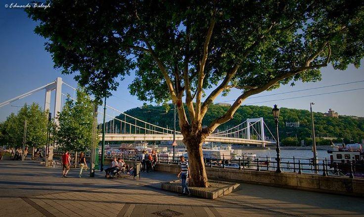 #Budapest amongst top European cities according to #HuffingtonPost http://www.huffingtonpost.com/2014/07/10/european-cities-visit-in-your-twenties_n_5504944.html?ncid=fcbklnkushpmg00000063