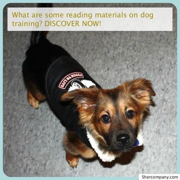 Newest Totally Free Dog Training Tools Dogtrainingtools Popular
