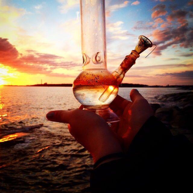 💕#love #home #ideas #things #idea #marijuana #cannabis #stoned #high #cannabiscures #legalize #420 #710 #wax #shatter #glass #vape #style #ideas #ganja #kush #cbd #bath #smoke #bongbeauties #alien #ganjagirls #potprincess #bakedbarbie #stonergirl #stoner problems #weed humor #funny #cool