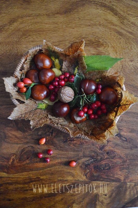 Színpompás asztali dekoráció az ősz terményeivel – Életszépítők