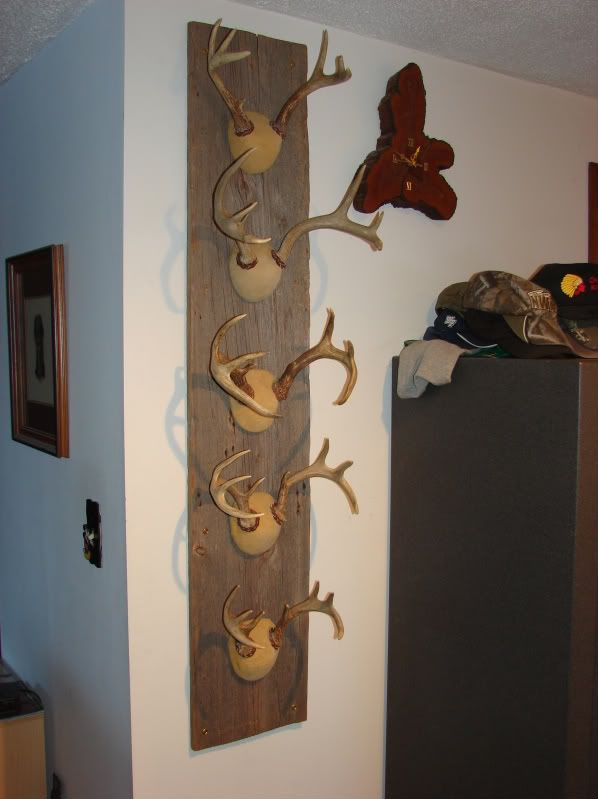 17 Best Images About Hunting On Pinterest Wall Mount