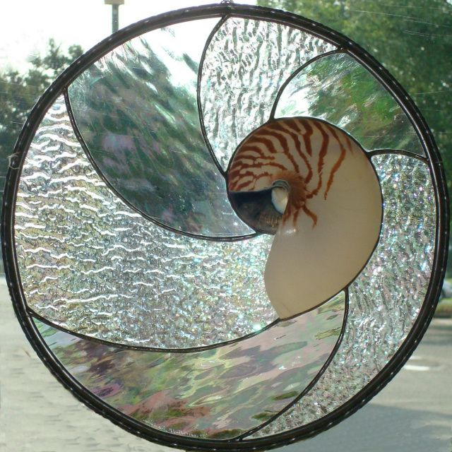 Stained Glass with Nautilus. More at stainedglassva.com