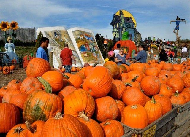 Philadelphia's Linvilla Orchards squeezes a whole lot of fun into the season.