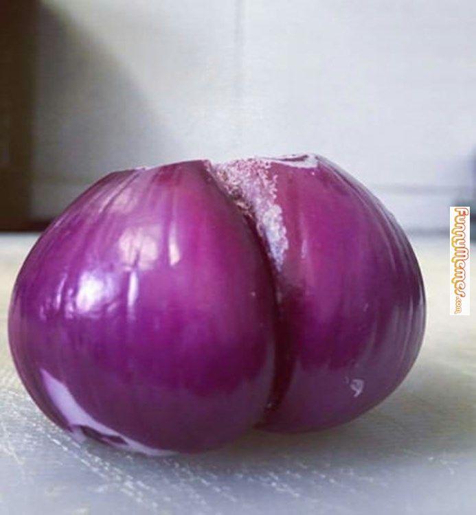 Funny memes Kardashians onion...
