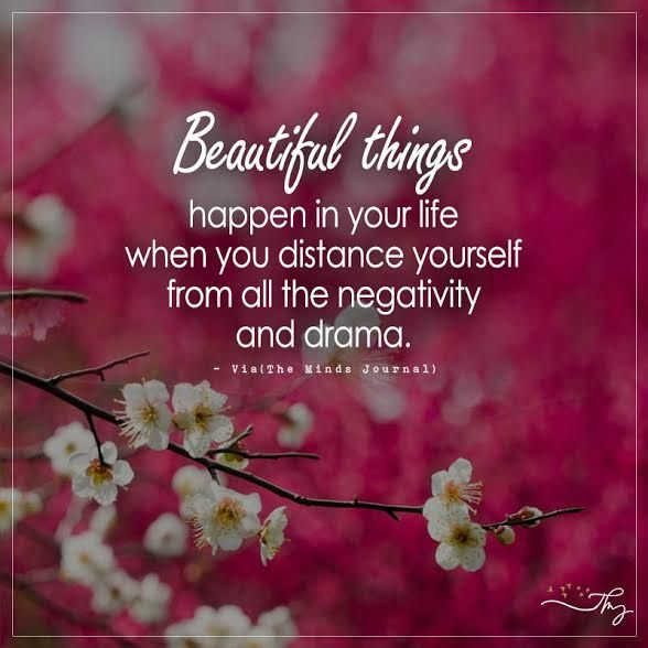 Beautiful things happen in your life when you distance yourself from all the negativity and drama. - http://themindsjournal.com/beautiful-things-happen-in-your-life-when-you-distance-yourself-from-all-the-negativity-and-drama/
