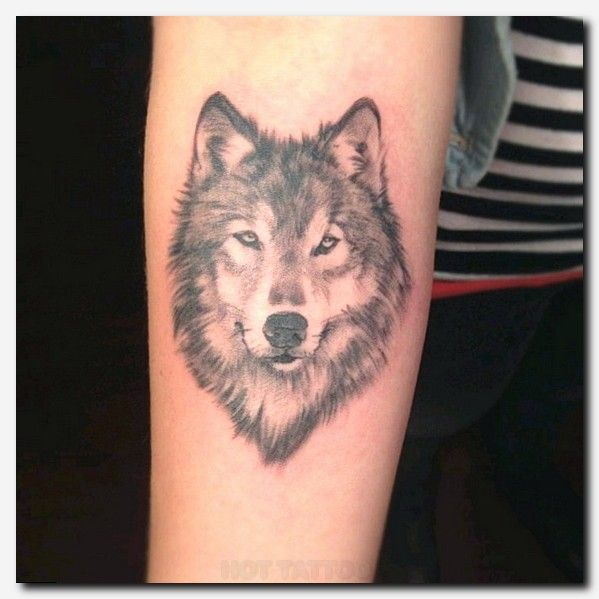 Best 25 Wolf Girl Tattoos Ideas On Pinterest: 25+ Best Ideas About Small Bird Tattoos On Pinterest