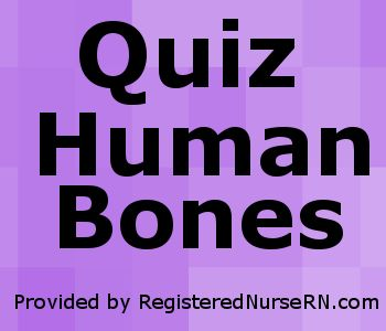 This quiz on human bones is designed to test your knowledge on the location of each individual bone. In your Anatomy & Physiology lecture and lab class, you will be required to name each indivi…