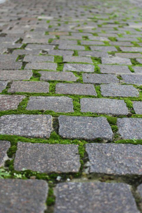 71 mejores im genes sobre pavimentos de exterior en - Pavimentos para jardin ...
