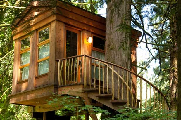Man Cave Nelson : Treehouse masters pete nelson seattle