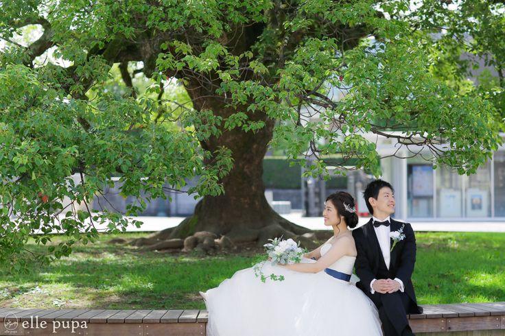 おふたりの思い出の場所*京都大学ロケーション撮影   *elle pupa blog*