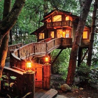 fabulous tree houses | Fabulous tree house