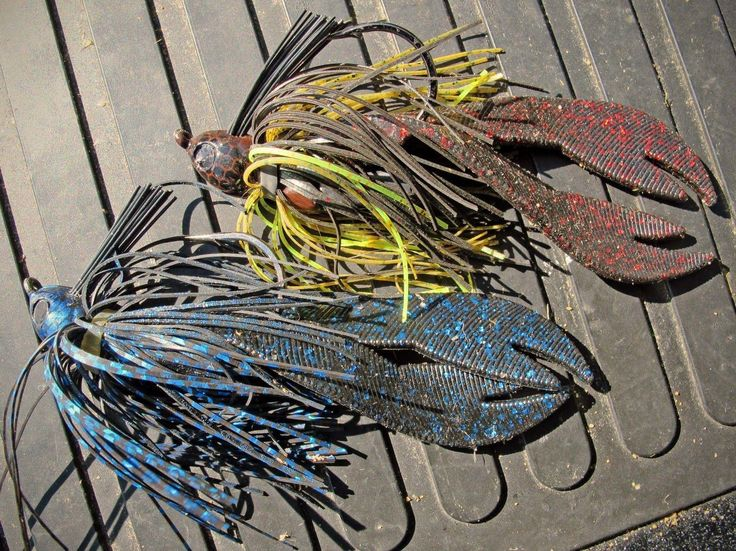 How To Catch Winter Jig Bass In Cold Weather Bass