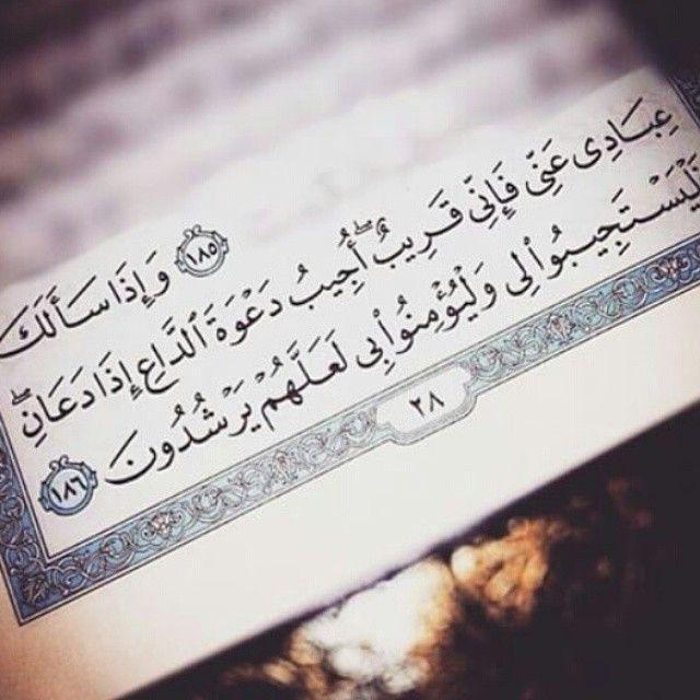 وكما للاستغفار والصدقه قصص ف للدعاااااء سهاام الليل لاتخطىء قصص الدعاء تقول الاخت جزاها Quran Quotes Love Islamic Love Quotes Quran Quotes Inspirational