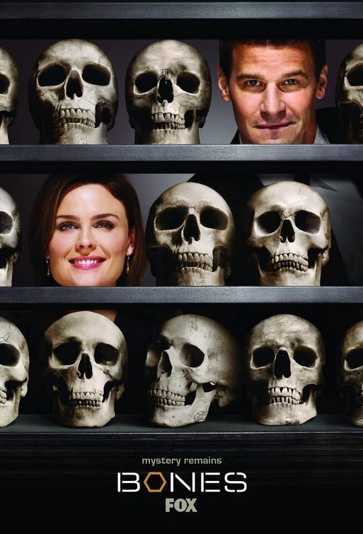 Bones (2005- ): A forensic anthropologist and a cocky FBI agent build a team to investigate death causes. And quite often, there isn't more to examine than rotten flesh or mere bones.