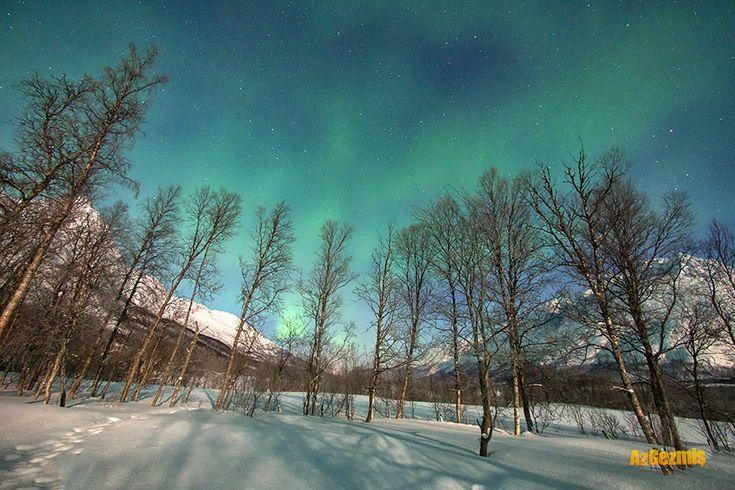 Trosmo'nun adı son dönemde kuzey ışıkları ile anılır oldu. Norveç'in bir hayli kuzeyinde bulunan Tromso şehri kuzey ışıklarını görmek için şansınızın en yüksek olduğu bölgelerden biri. Hal böyle olunca kuzey ışıkları için çizilmiş özel rotalar bile bulunuyor. Hatta Tromso dışına çıkarken tabelalar ile bu rotalara yönlendirmeler yapılmış.