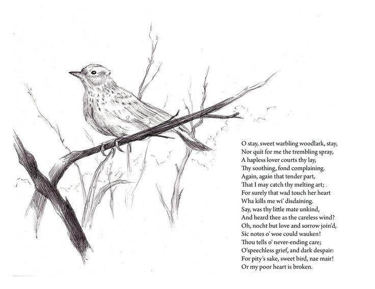 Address to the Woodlark by Robert Burns