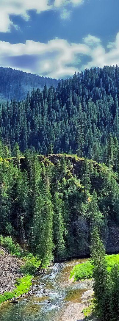 St. Joe River, Idaho // Idyllic Idaho - Kerry Angelos | kerryrangelos.com