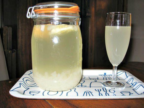 Originaire du Caucase, le kéfir est une boisson issue de la fermentation de probiotiques dans le lait ou dans l'eau. Il a notamment de nombreuses vertus digestives. On vous dit tout sur sa composition, sa fabrication et ses bienfaits.