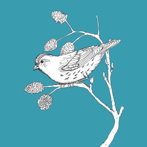 Woodland bird-print
