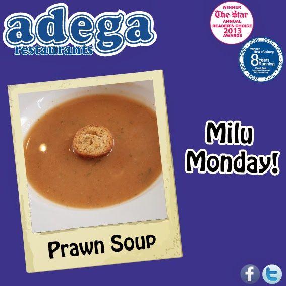 Milu Monday - Prawn Soup!