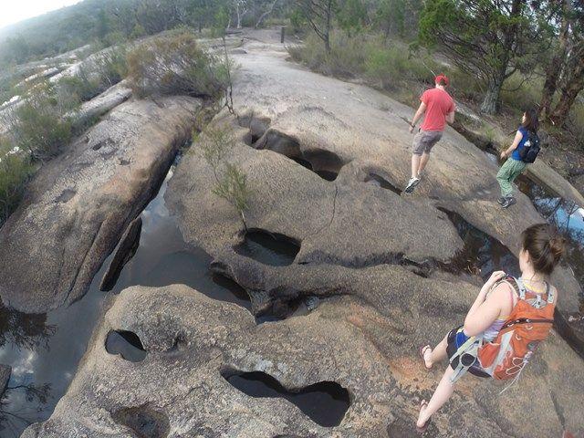 Bald Rock Creek Circuit - Aussie Bushwalking