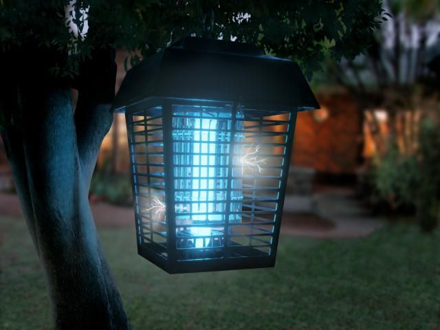 People swear that bug zappers make a big difference in their backyard mosquito population, but research proves otherwise.