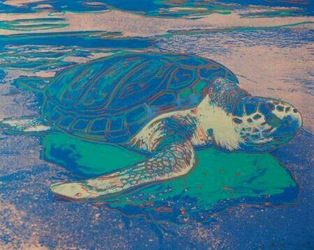 Andy Warhol ( Artist ),  Sea Turtle , 1985