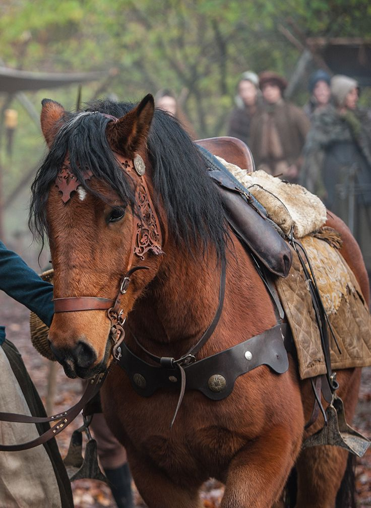 "Outlander: ""Brimstone"" Claire's Horse. Who designs/makes the 'costumes' for the horses? The detail on this bridle is amazing!"