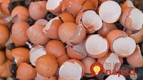 Poklad, ktorý vyhadzujeme: Čo všetko dokážu vaječné škrupiny?