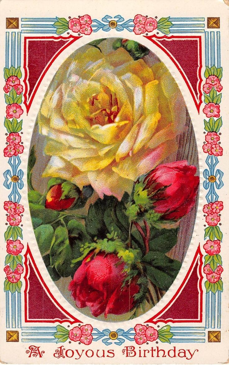 173 best vintage birthday cards images on pinterest vintage 1914 birthday postcard of gorgeous yellow red roses kristyandbryce Image collections