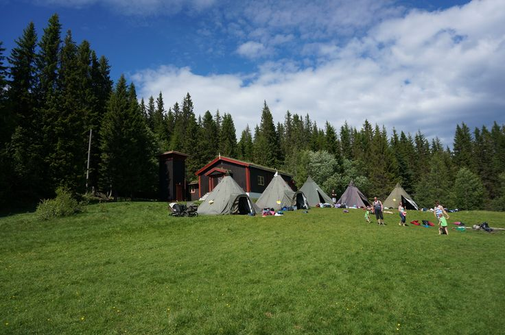 Spotted tents pitched in Bymarka Forest as we started our 2-hour hike on a beautiful sunny day.