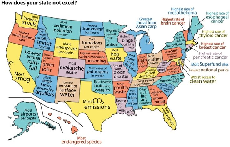 How does your state not excel?