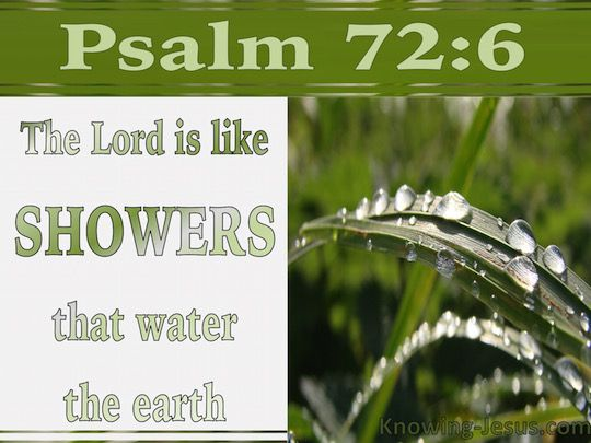 Psalm 72:6 (KJV) ~ He shall come down like rain upon the mown grass: as showers that water the earth.