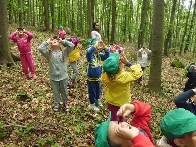 Barátom az erdő! | Családinet.hu