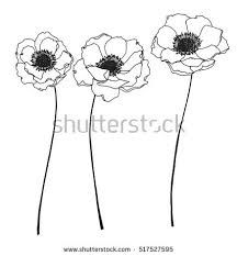 Image result for flower line drawing