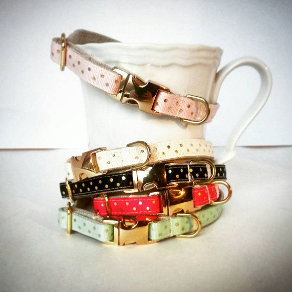 Hey, I found this really awesome Etsy listing at https://www.etsy.com/listing/213761274/polkadot-dog-collar-dog-collars-gold-dog