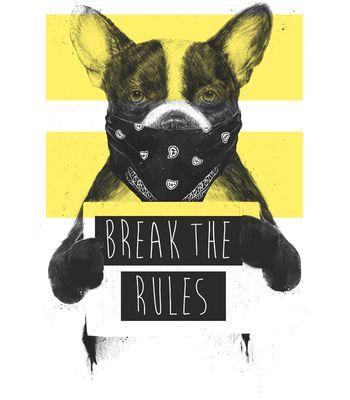 Arte REBEL DOG (YELLOW) de Balazs Solti   Disponível em camiseta, almofada, caneca e case de celular. Só na @toutsbrasil
