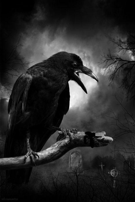 Y el cuervo sin revolotear, todavía posado, todavía posado, en el pálido busto de Palas encima de la puerta de mi habitación,