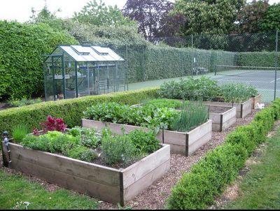 I like these gardening boxes. I'd like those to grow veggies and fruit for my personal garden.