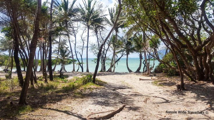 Archer Point FNQ Australia  #tropical #queensland #palmtrees #ocean #Australia #aussiewidetravellers #travellers