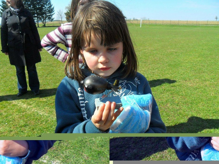 Grab your bunny to ...  Chyť si svého zajíčka...