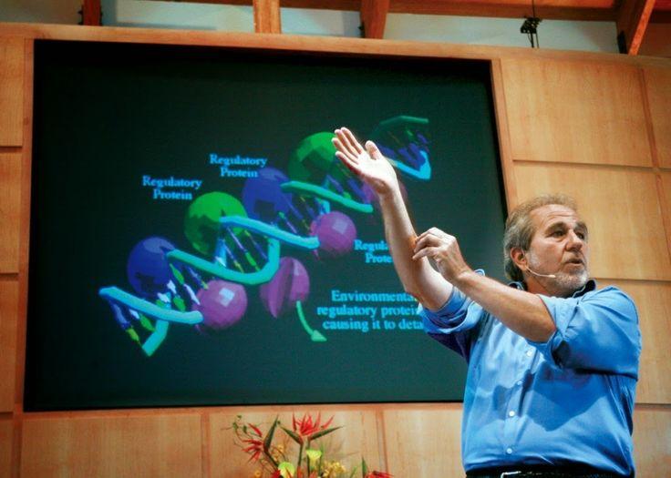 Bruce Lipton reclama una nueva medicina, la que tenga en cuenta la capacidad de curar a través de la energía, mucha más eficaz que los medicamentos. Bruce