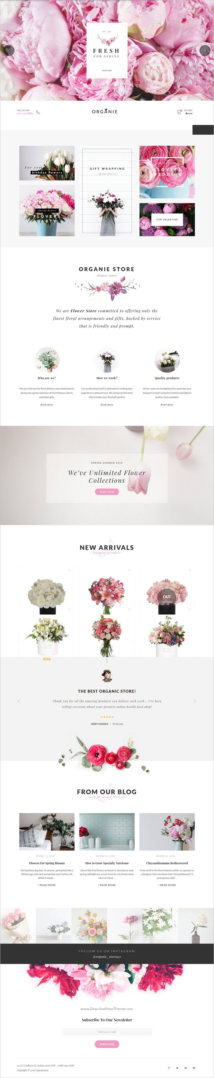 Organie is a wonderful responsive 12in1 WooCommerce #WordPress theme for #florist organic #store, farm, cake and flower shop eCommerce website download now➩ https://themeforest.net/item/organie-an-organic-store-farm-cake-flower-shop-woocommerce-theme/18777939?ref=Datasata