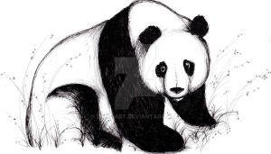 Panda by ishkaart
