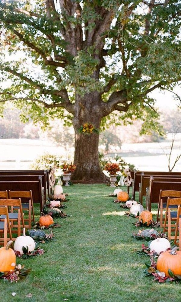 backyard wedding venues in orange county ca%0A   Ways to Decorate Your Fall Ceremony Aisle