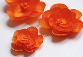 Flor de Papel Crepom - c/ PAP                                                                                                                                                                                 Mais