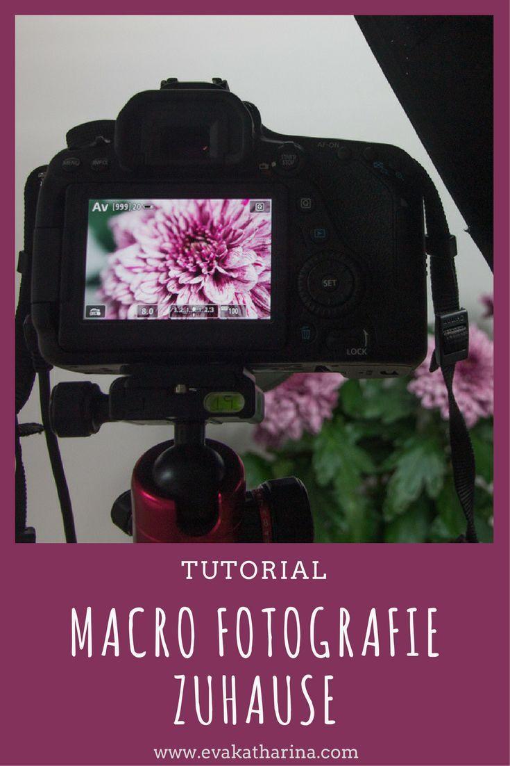 Gewusst wie: Makro Fotografie im Home Studio | sei fabelhaft