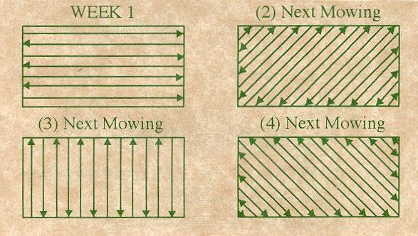 Mow lawns in alternating patterns to avoid ruts and keep a level surface and smooth cut. This also prevents grass from bending instead of cutting.