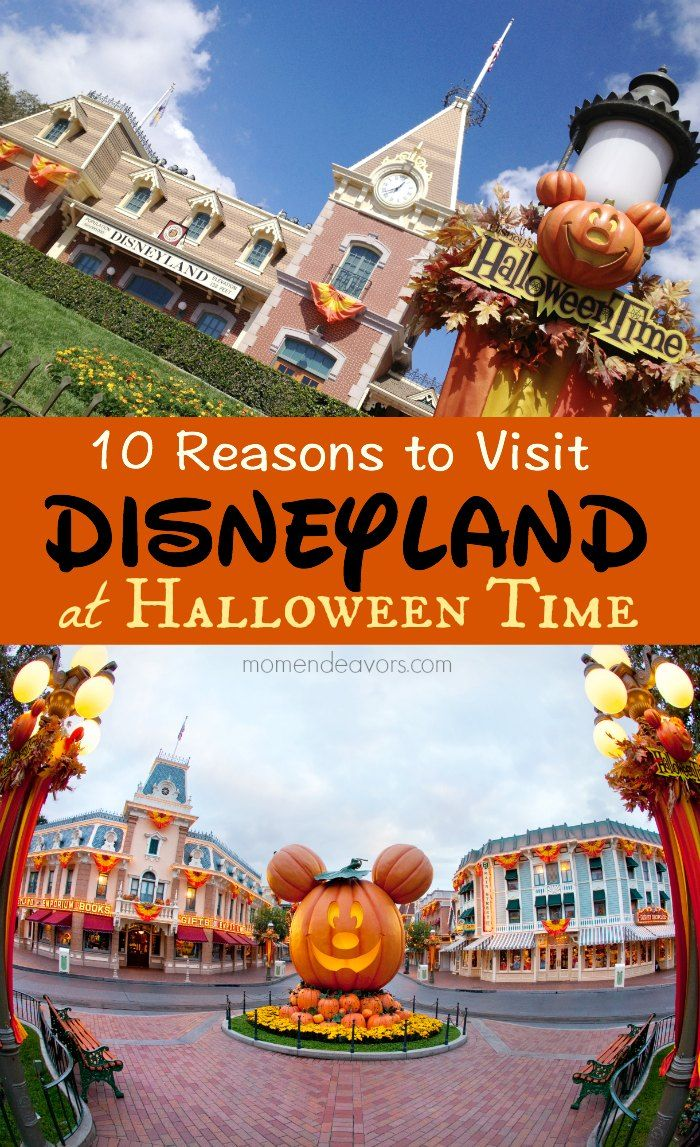 10 Reasons to Visit Disneyland at Halloween Time - so fun!!