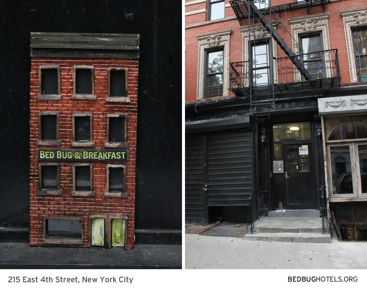 Bed Bug Hotels.  An installation placing mini hotels where bed bugs have been reported in NYC